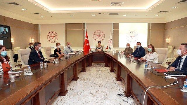 Sağlık Bakan Yardımcısı Emine Alp Meşe, Azerbaycanlı mevkidaşı Kasımov'la görüştü