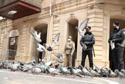 Bakü'nün meydanları güvercinlere kaldı- FOTO